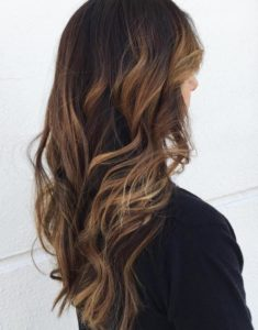 Light brown highlights on black hair